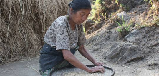 A traditional farmer selects seeds in the Eastern Himalayas, India. (Photo: Ruchi Pant/Ecoserve)