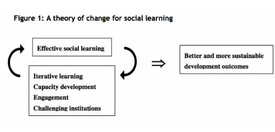 Diagram of the theory of change for social learning