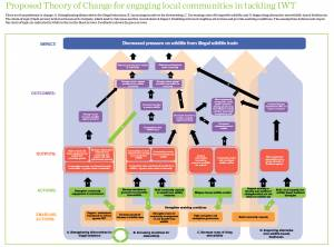 A draft theory of change to explore four different approaches to engaging communities in tackling illegal wildlife trade. Click to the right to see a table of assumptions on which the image is based (Image: IIED)