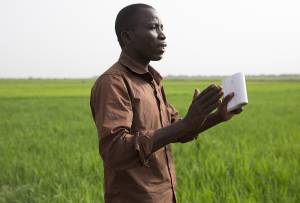 Bakary Diawara, agricultural engineer and chief of the Sélingué advice team (Photo: Mike Goldwater/GWI)