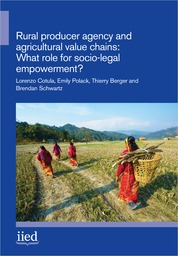 Cover of Rural producer agency and agricultural value chains: What role for socio-legal empowerment?