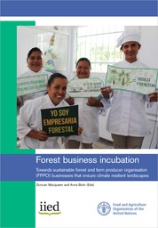 Cover of Forest business incubation: Towards sustainable forest and farm producer organisation (FFPO) businesses that ensure climate resilient landscapes