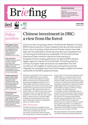 Chinese investment in DRC: a view from the forest