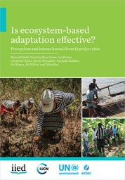 Is ecosystem-based adaptation effective? Perceptions and lessons learned from 13 project sites