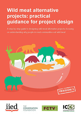 Wild meat alternative projects: practical guidance for project design
