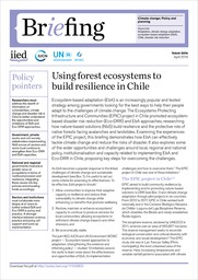 Using forest ecosystems to build resilience in Chile