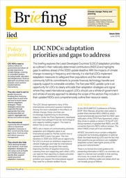 LDC NDCs: adaptation priorities and gaps to address