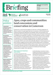 Apes, crops and communities: land concessions and conservation in Cameroon