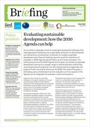 Evaluating sustainable development: how the 2030 Agenda can help