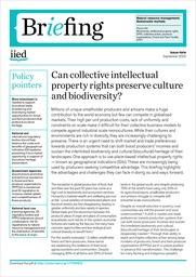 Can collective intellectual property rights preserve culture and biodiversity?