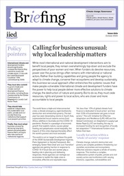 Calling for business unusual: why local leadership matters