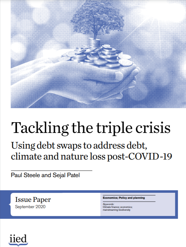 cover of Tackling the triple crisis: using debt swaps to address debt, climate and nature loss post-COVID-19