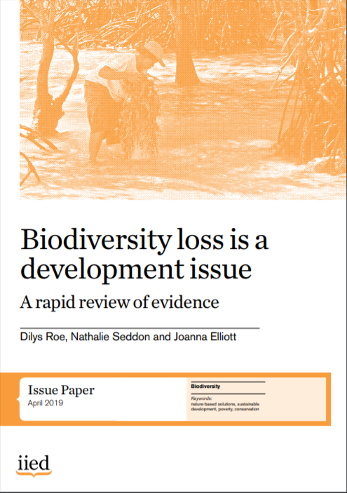 cover of Biodiversity loss is a development issue. A rapid review of the evidence