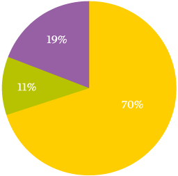 Income by donor type pie chart