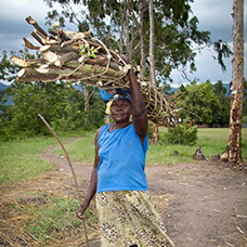 A woman carries firewood