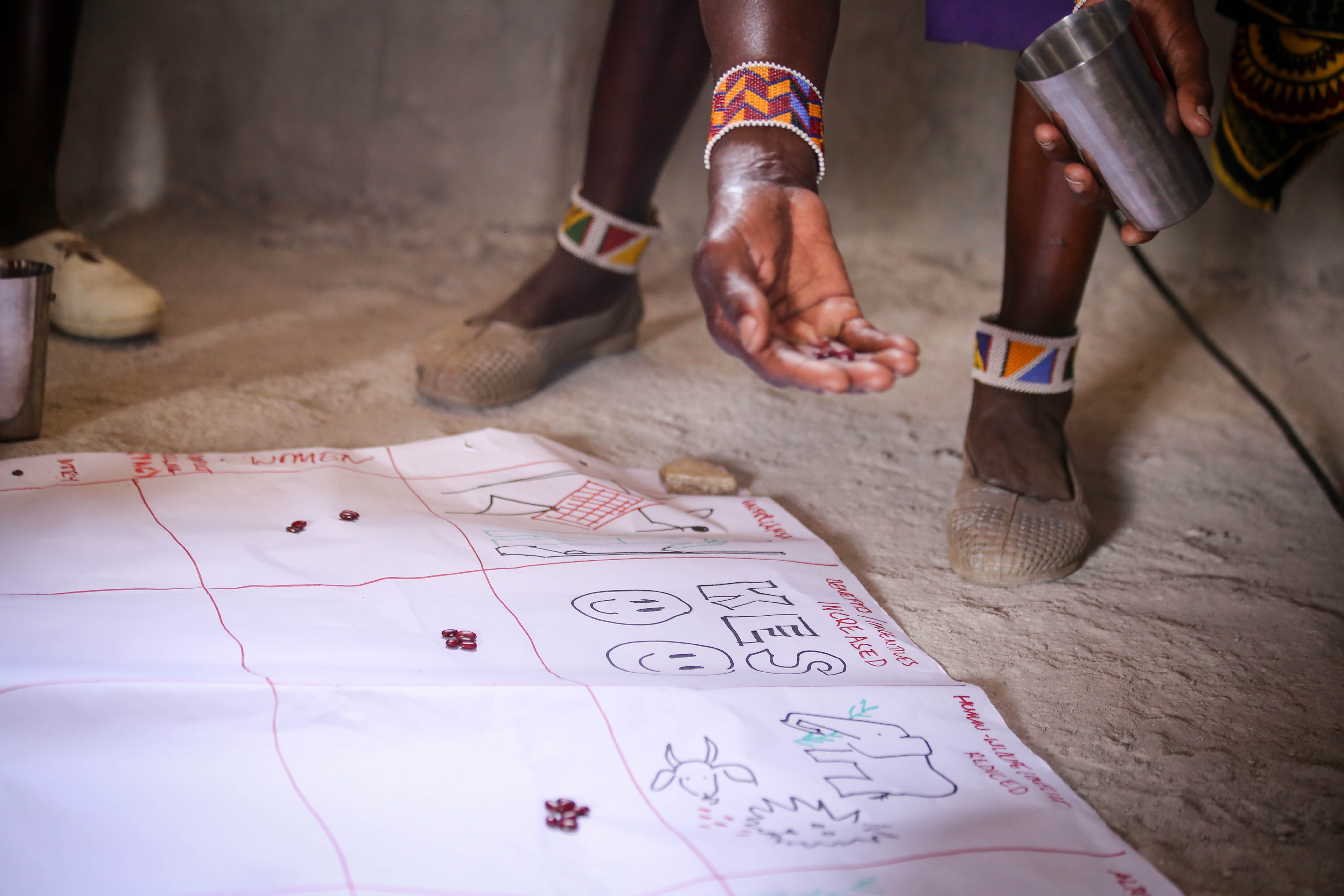 A poster with a table drawn on the floor, and a person  throws seeds on each cell