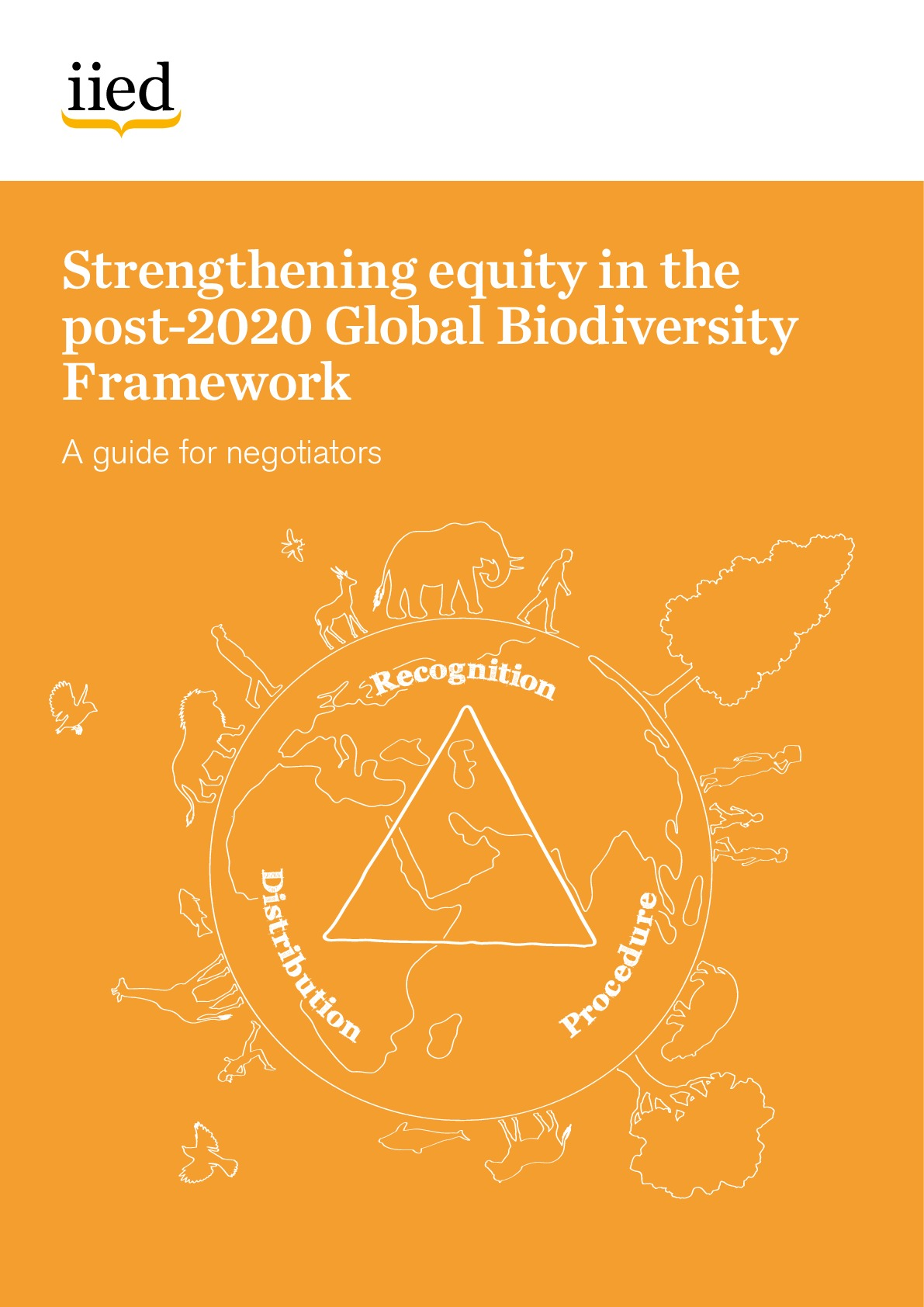 Strengthening equity in the post-2020 Global Biodiversity Framework