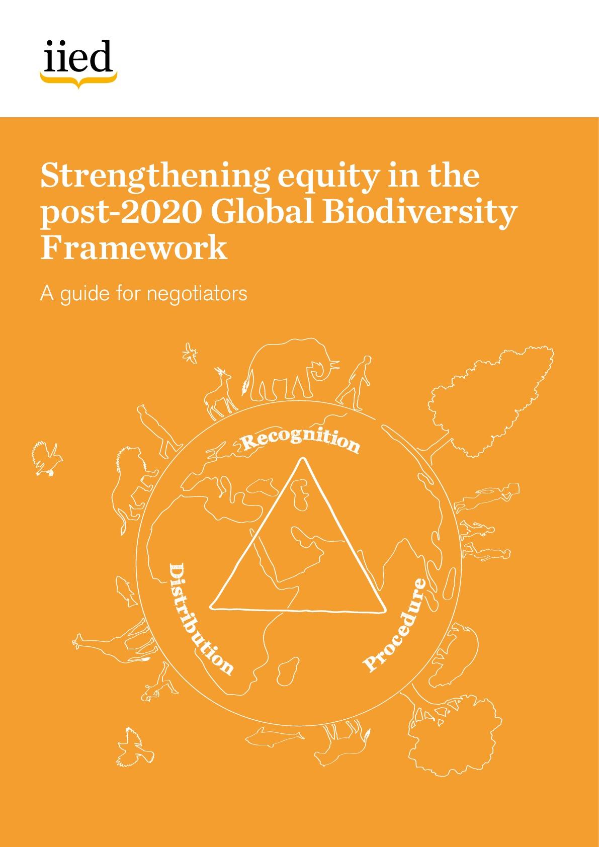Strengthening equity in the post-2020 Global Biodiversity Framework