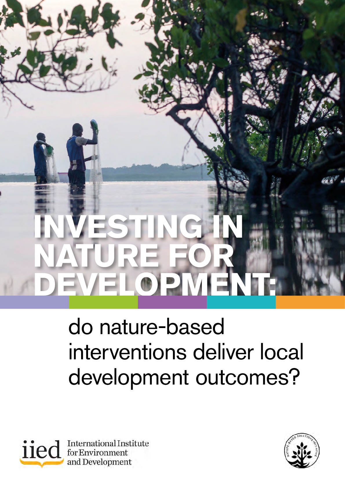 Investing in nature for development: do nature-based interventions deliver local development outcomes?