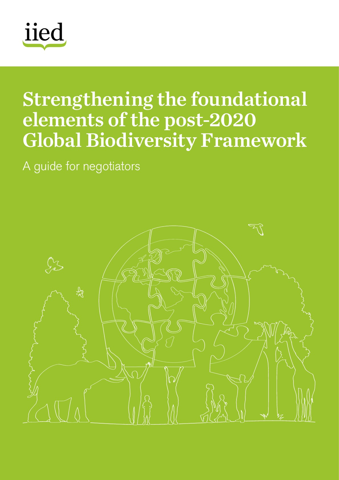Strengthening the foundational elements of the post-2020 Global Biodiversity Framework