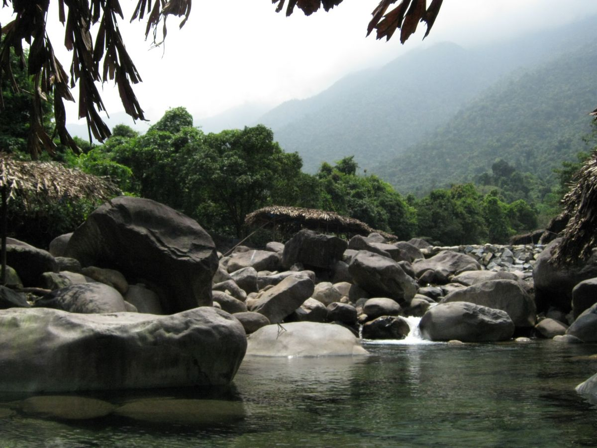 A mountain stream bordered by forest and rocks, Vietnam.