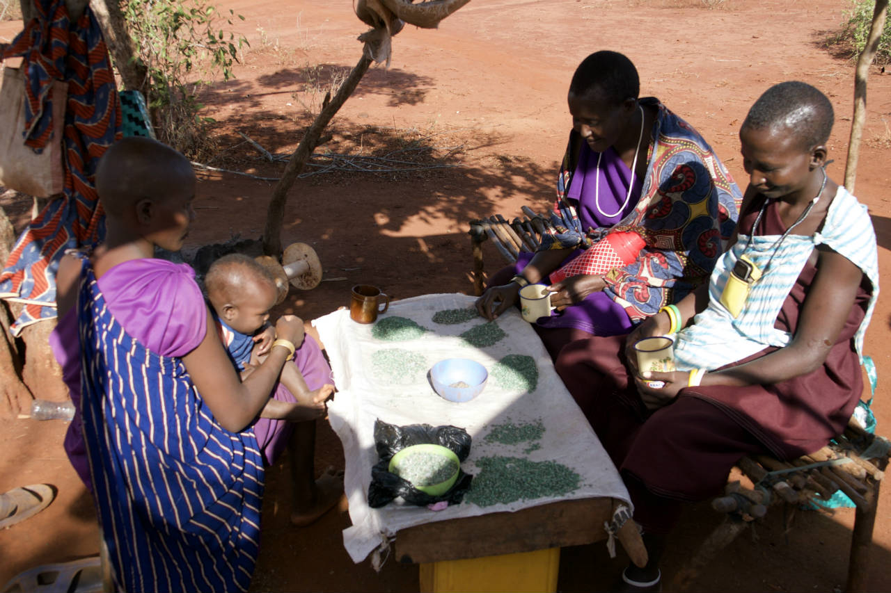 Masaai women sorting gems