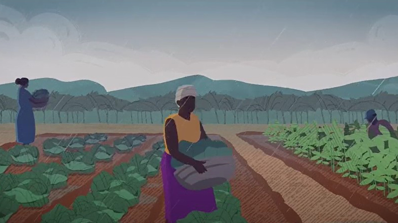 Animation of a woman picking vegetables