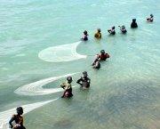 Women pulling fishing nets through shallow water