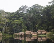 Houses on stilts at the side of water, with trees behind