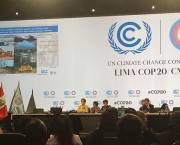 COP20 begins in Lima, where negotiators have gathered to discuss action to tackle global  climate change (Photo: Kate Wilson/IIED)