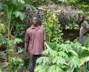 Local farm foresters near Kumasi, Ghana. Evidence suggests that locally controlled forests are generally better for the forest and people than either protected areas or large-scale industrial business models (Photo: WWF)