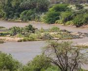 The Ewaso Ng'iro River, in Isiolo County's Shaba National Reserve, Kenya where pilot projects to support adaptation 'may not yet be perfect, but have the right idea'. (Photo: Ninara via Creative Commons http://creativecommons.org/licenses/by/2.0/)
