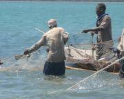 Fishermen hauling in nets near the Kenyan coastal town of Shimoni (Photo: Anna Kika via Flickr)