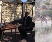 IIED research communications manager Rosalind Goodrich provided coverage from the third NBSAP 2.0 workshop at Midgard Estate in Namibia, where giraffes could be seen (Photo: Rosalind Goodrich/IIED)