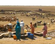 In Kebkabiya, North Darfur, the NGO Practical Action has been helping communities prevent conflict between farmers and pastoralists by encouraging the construction and rehabilitation of watering points (Photo: Margaret Gardner, Practical Action)