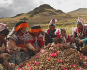 A group of people gather around a pile of potatoes with mountains as a backdrop