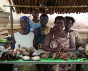 Women selling fish in Nyakrom, Central Ghana. The food economy is the largest informal sector in West Africa (Photo: aripeskoe2, Creative Commons via Flickr)