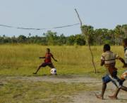 A goal worth scoring: Lessons from winning football teams can improve the supply chains of commodities that drive deforestation. Credit: Cusia-Inc