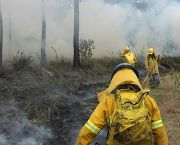 Pre-emptive controlled burning in Belize is preventing severe uncontrolled wild fires during the driest months (Photo: Toledo Institute for Development and Environment)