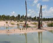Tidal damage on the small island nation of Kiribati. Small island developing nations, especially the atoll nations of the Pacific and Indian Oceans, are among the poorest and most vulnerable to climate change (Photo: Jodie Gatfield, AusAID)