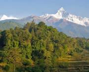 Mountains, forests and rice paddies in Nepal. Photo: Sajal Sthapit
