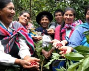 A group of women in a forest smile as they hold out handfuls of coffee beans