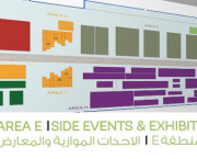 COP22 side events