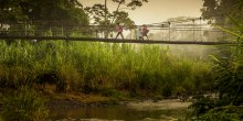 This bridge crossing the Yorkin river in the Sixaola Basin is used daily by local communities, including children on their way to school in the early morning. (Photo: Paul Aragón,©IUCN)