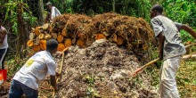 Men pile organic material in a forest