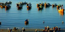 Fishing boats in Viet Nam