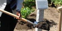 Close-up of a shovel, on which dirt is balanced, during a tree-planting ceremony, with a plaque in the background