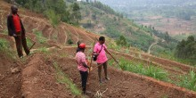Three farmers plan their crops on a steep hillside