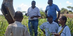 The field team designing a REDD strategy talk to farmer Nimale Maribu Saidi as part of their field research in Meceburi Forest Reserve, Mozambique .Photo by Mike Goldwater