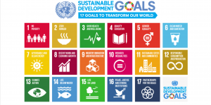 The logo for the Sustainable Development Goals (Image: the United Nations)